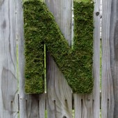 Moss Letter 12 inch