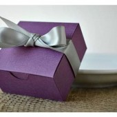 Create Your Own Favor Kit: Purple
