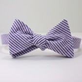 Purple Seersucker Bow Tie