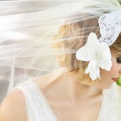 Bridal Cap Veil in Alencon Lace