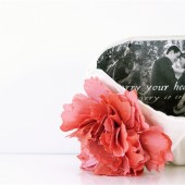 petit ruche photo clutch