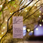 Wishing Tree Tags and Sign