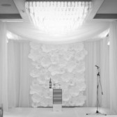 Paper Flower Photos Backdrop