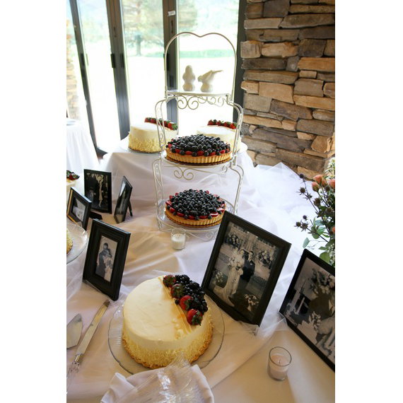 Mt. Princeton wedding