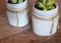 mini-mason-jar-succulent-favors