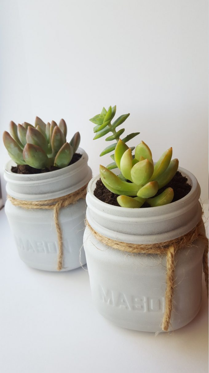 Succulents in Mason Jars Favor Idea for Weddings