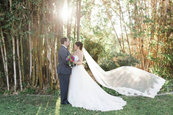 Wedding veils, like sashes, can be pretty darn expensive -- well, that is, unless you know where to look. And we've done some serious digging for you to make sure you know where to find the best cheap bridal veils that look beautiful...