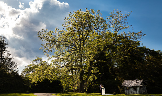 Daniel Fugaciu Photography - first look under tree - tyler arboretum wedding