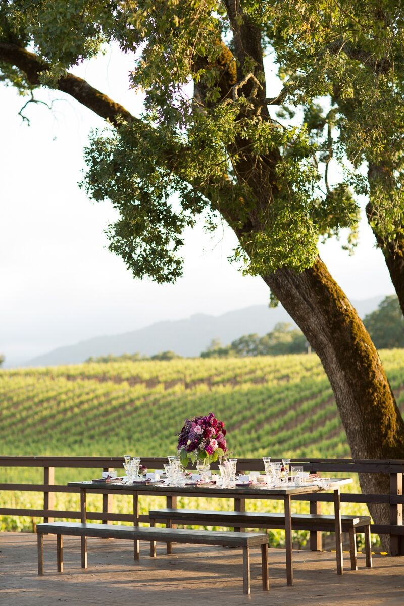 Intimate Wedding Reception Table at Winery (photo: olivia smartt) http://emmalinebride.com/themes/winery-style-wedding/