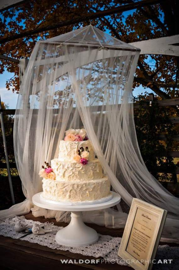 You can protect wedding cake with a canopy, made from netting and a canopy loop.  Hang from the ceiling with a hook or beams.