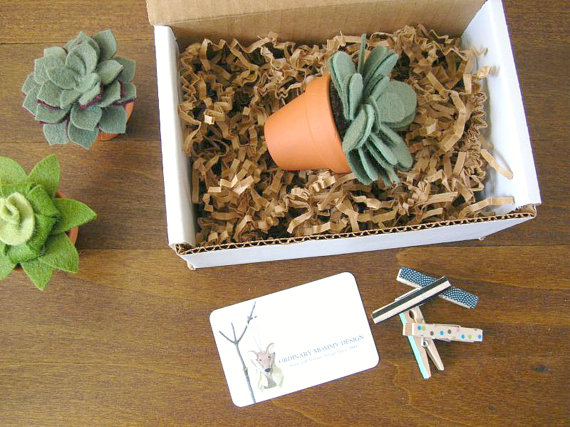felt succulent packaged to go (by ordinary mommy)