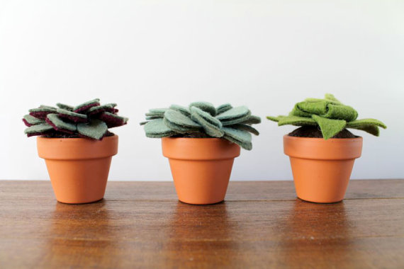 felt succulent trio (by ordinary mommy)
