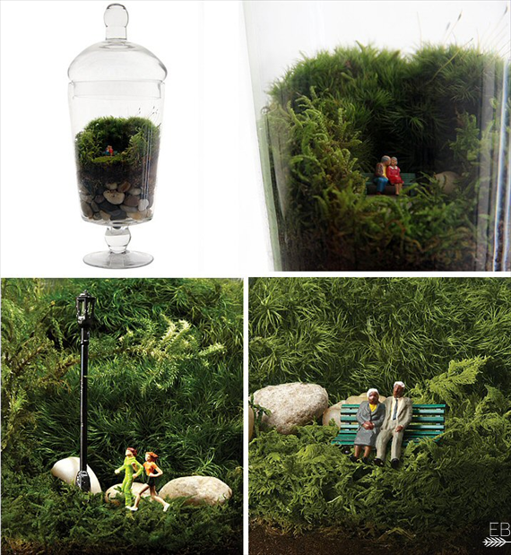 grow old with me terrarium