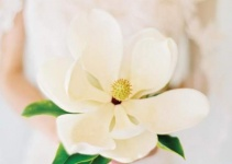 magnolia-single-stem-bouquet