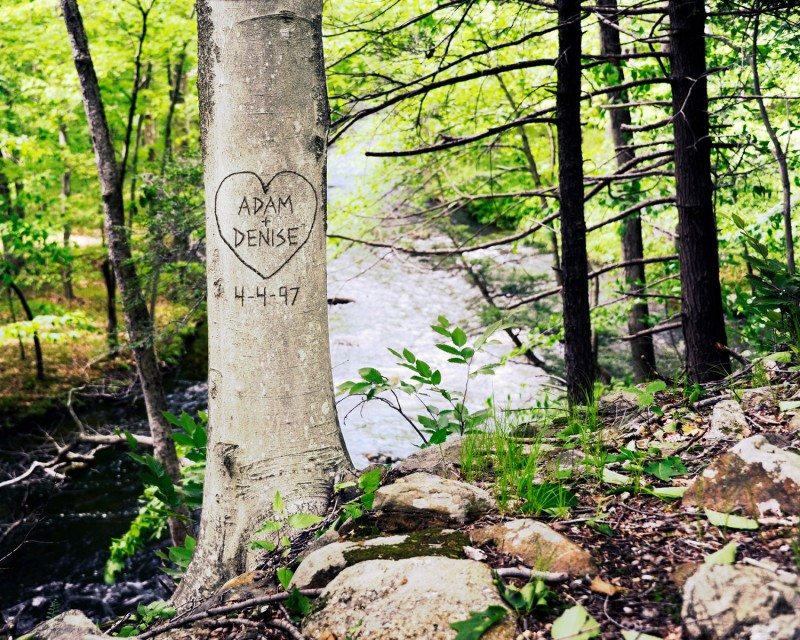 Personalized Print with Your Names on Tree | by Picture It Personal | via https://emmalinebride.com/2015-giveaway/personalized-print-names/