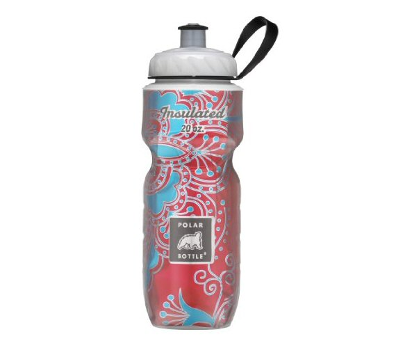Top 20 Fitness Accessories (via EmmalineBride.com): #19 A Well-Insulated Water Bottle