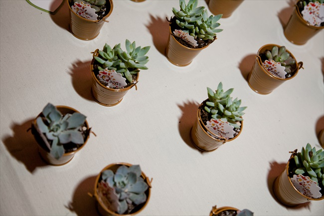 succulents - Maryland Handmade Wedding