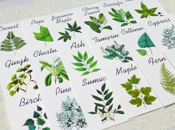 Wedding Table Name Ideas (via EmmalineBride) by leaf decor