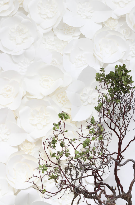 white flower backdrop-2