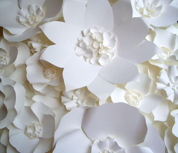 white flower backdrop-4
